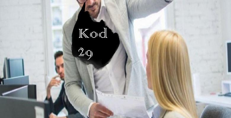Kod 29 nedir?