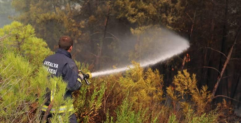 Manavgat yangın söndürme çalışmaları sürüyor/ Foto Galeri