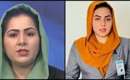 Taliban, aynı Taliban