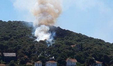 Heybeliada'daki yangın kontrol altına alındı